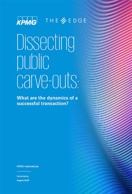 Dissecting public carve-outs