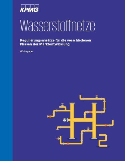 Regulierung von Wasserstoffnetzen